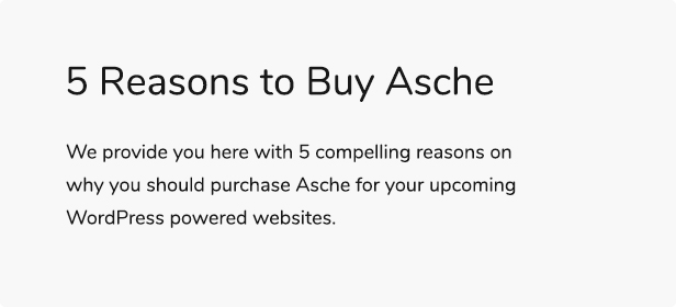 Asche - Complete Coming Soon and Maintenance Mode Plugin - 5